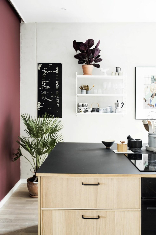 Planter, kunst og farge på veggene er med på å gjøre kjøkkenet til alt annet enn et sterilt rom. Litografiet er av Leif Sylvester.