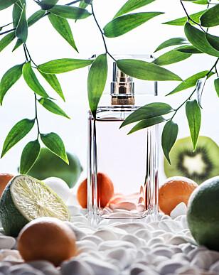 HVILKEN LUKT LIKER DU? Ifølge Pilkington er det mange spørsmål du må spørre deg før du finner den perfekte parfymen. FOTO: NTB Scanpix