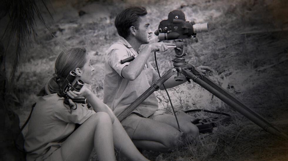GIFTET SEG: Til tross for at Jane Goodall aldri hadde tenkt tanken om å gifte seg, sa hun ja til filmfotograf Hugo van Lawick i England i 1964. Foto: NTB Scanpix