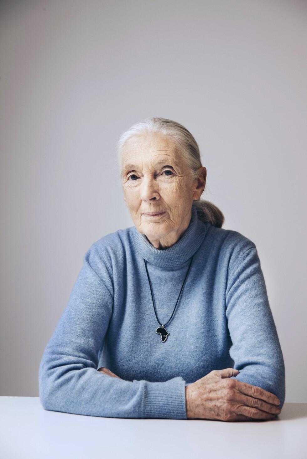 I DAG: Det er ingen tvil om at den flotte antropologen holder seg godt. 3. april fyller Jane Goodall 84 år. Foto: NTB Scanpix