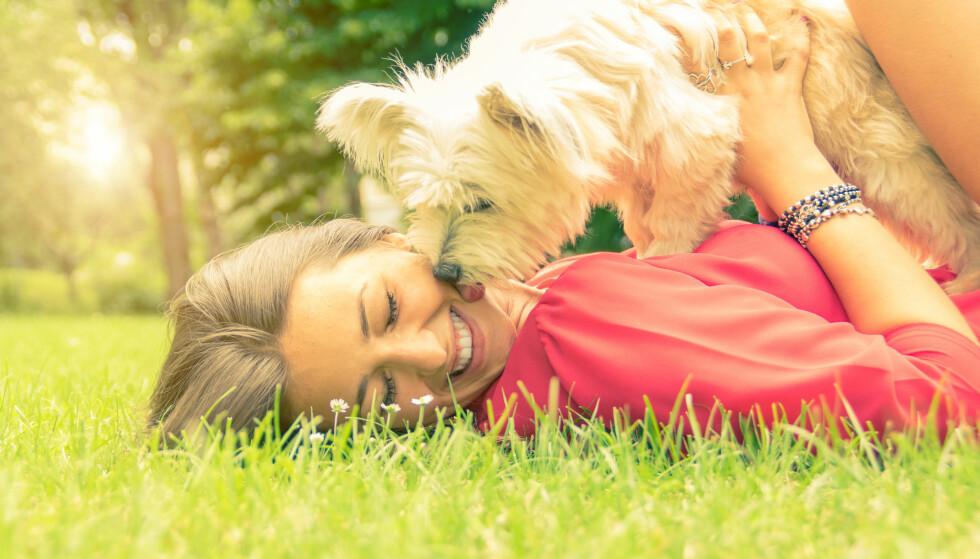 BESTEVENN: Det er ikke rart hunden er å regne som menneskets beste venn. FOTO: NTB Scanpix