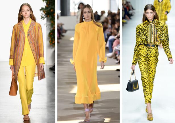 FRA CATWALKEN: Mansur Gavriel (t.v.) viste gult til sin høstkolleksjon, mens Tibi (i midten) og Versace (t.h.) går for gult denne våren. Foto: Scanpix
