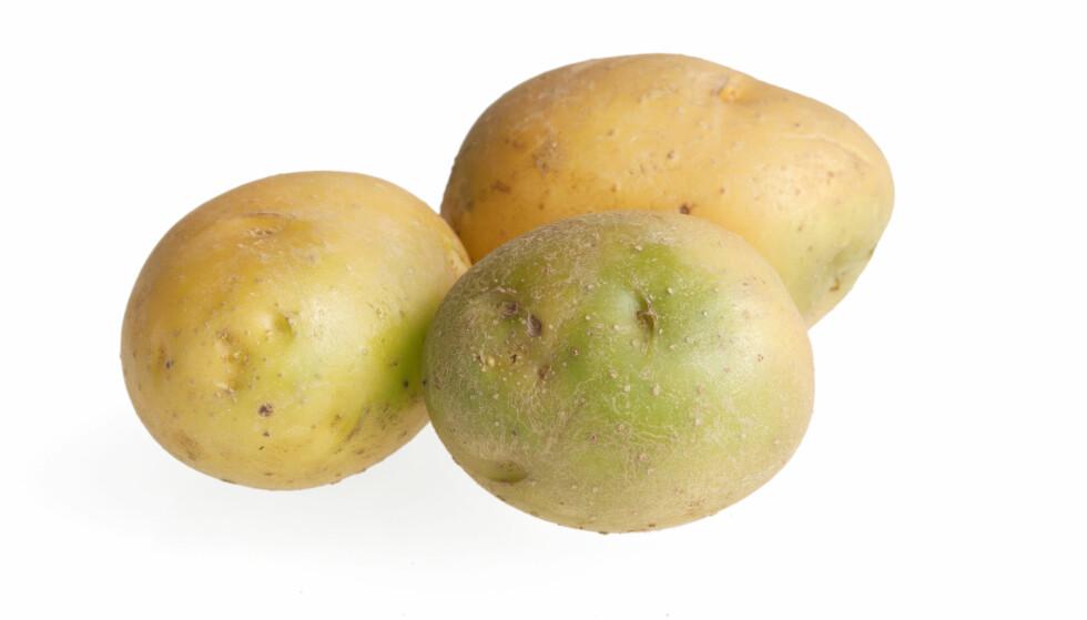 GIFTIG STOFF: Lys og varme bidrar til økt nivå av solanin i poteten, og da skal de ikke spises. FOTO: NTB Scanpix