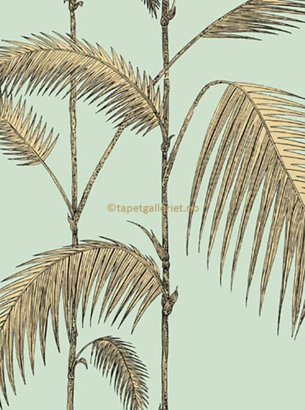 Eksotisk og superfresht tapet, «Palm Leaves» (kr1350, Cole & Son).
