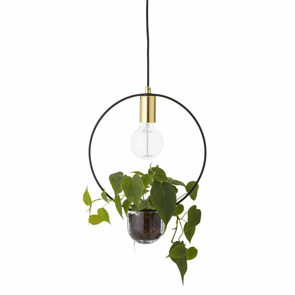 Kul kombo! Lampe med liten potte til plante (kr 950, Bloomingville).