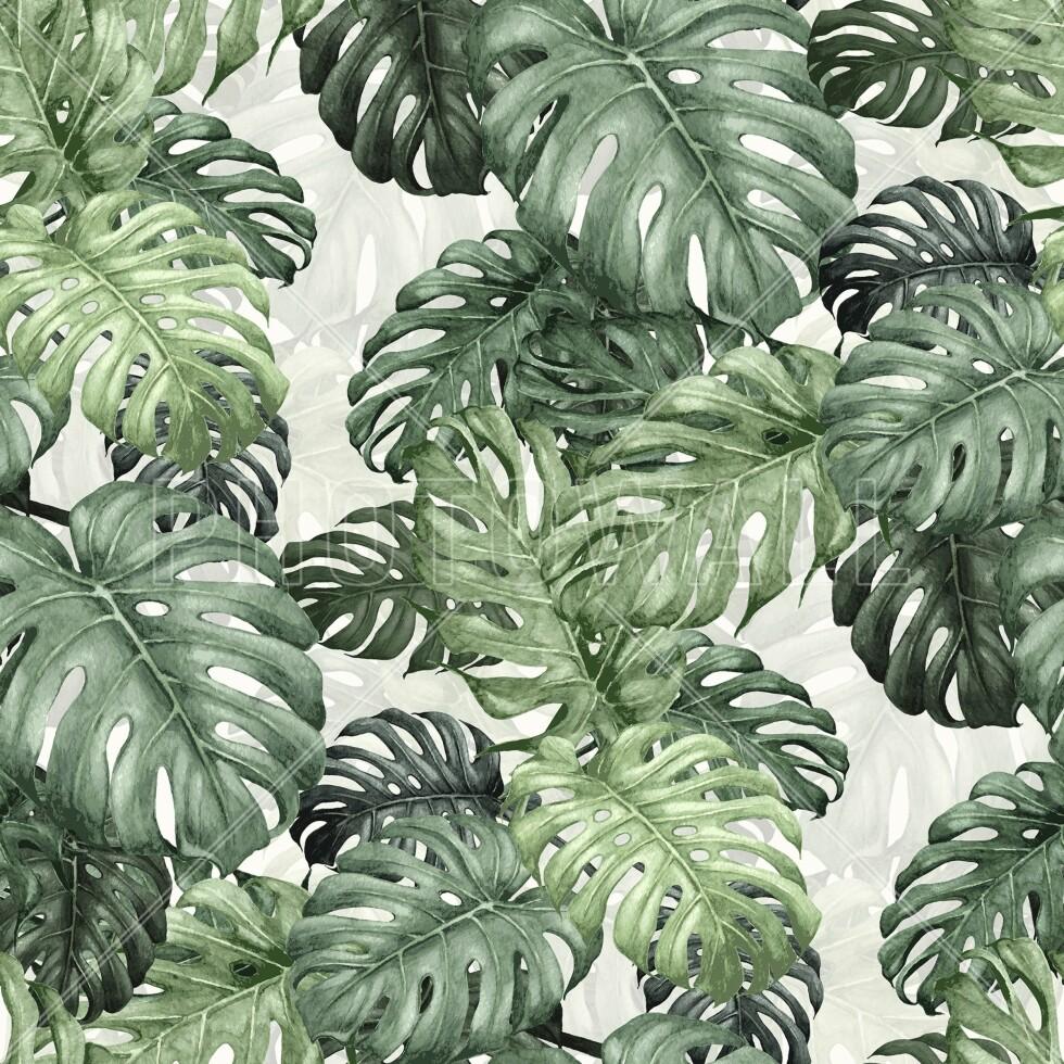 Fototapetet «Botany Monstera» (kr 307/m2, Photowall).