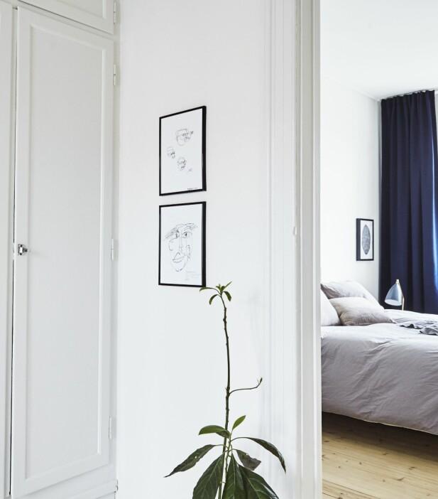 Blå og grå farger gir en følelse av ro og er derfor spesielt fine å bruke på soverommet. Sengetøyet og det grå sengeteppet er fra Rue Verte og velurgardinene fra Ikea. I mellomgangen henger to små bilder som paret har laget selv. FOTO: Ditte Capion