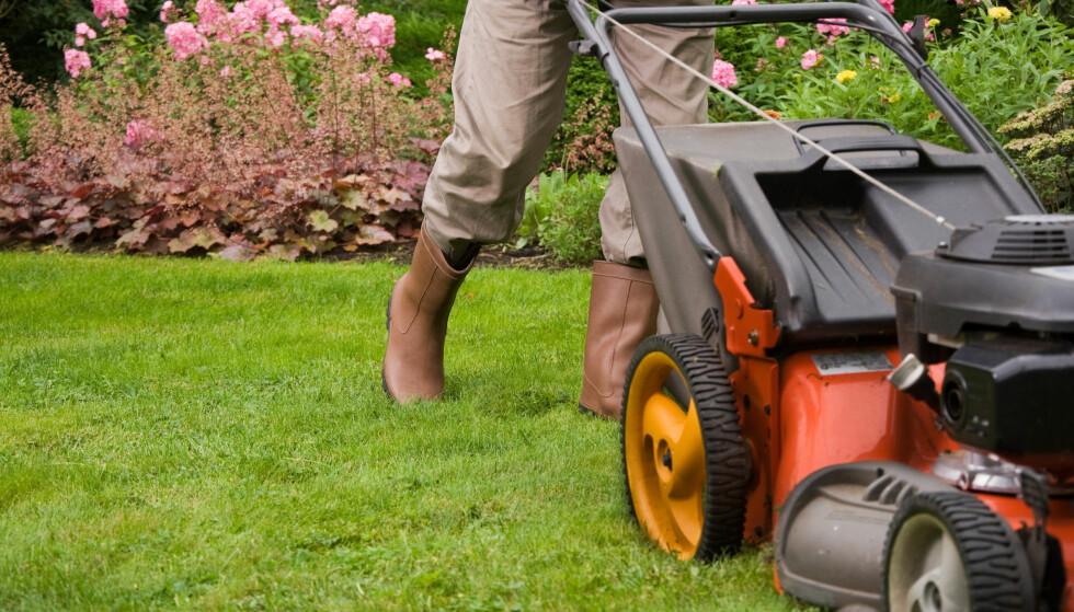NABOSTØY: Naboen må klippe gresset, men det bør helst ikke skje på på røde dager. FOTO: NTB Scanpix