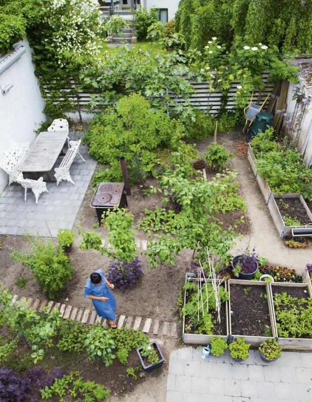 I den grønne gården er det plass til både høybed og en fin terrasse. FOTO: Pernille Enoch