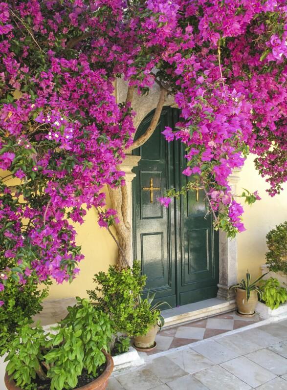 KORFU: Korfu er en undervurdert ferieøy, og passer like godt for feststemt ungdom som godt voksne på jakt etter rolige dager på en øde strand. NTB scanpix