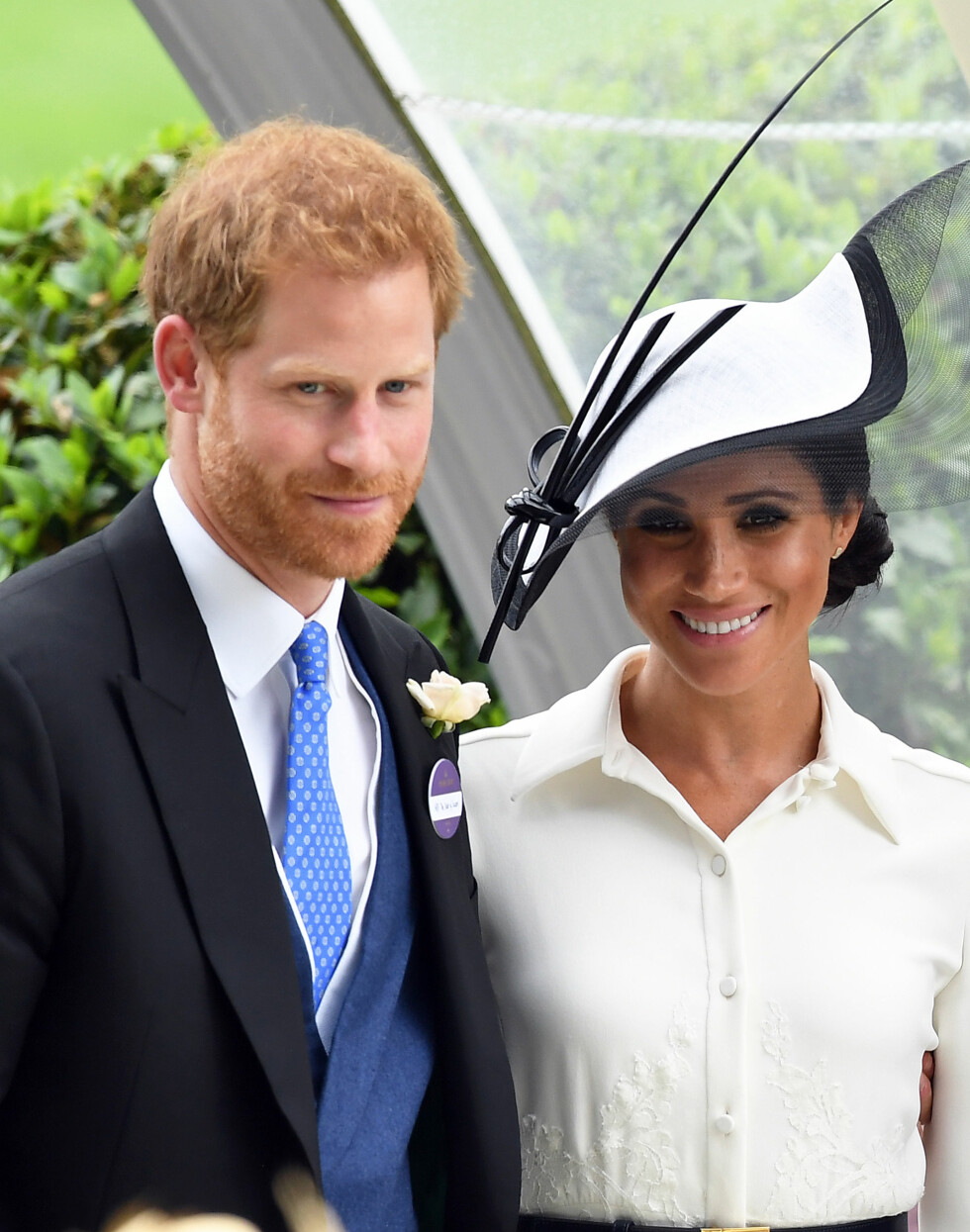 Prins Harry og hertuginne Meghan