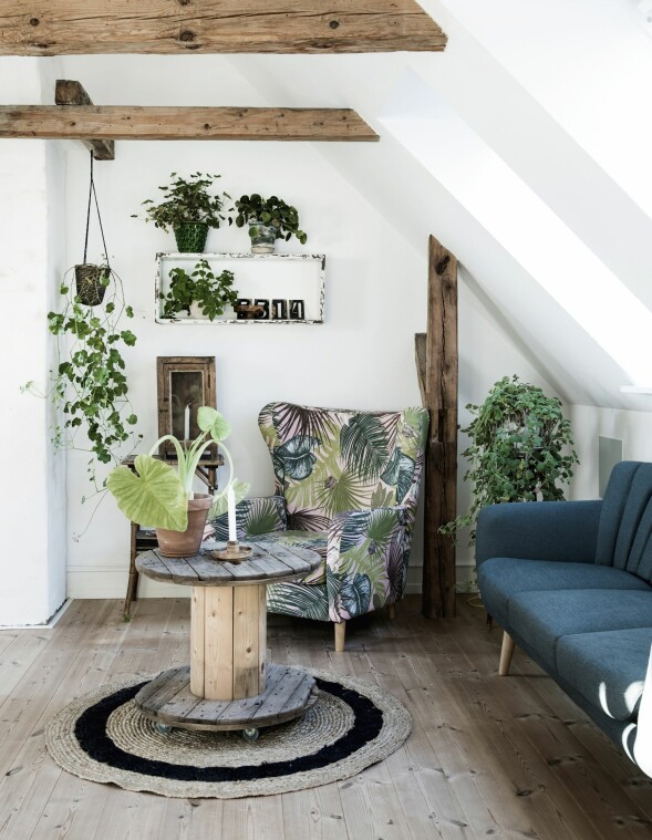 I husets første etasje er det en liten stue med rustikt bjelketak. Lenestolen har Carina selv trukket om, og sofabordet har hun laget av en gammel kabeltromme. Rundt omkring pynter mange grønne planter opp. FOTO: Tia Borgsmidt