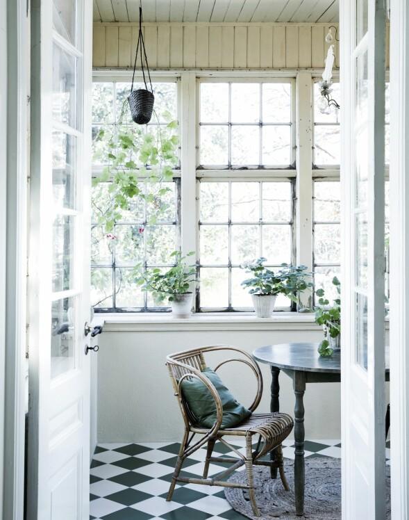 I hagestuen skaper det grønn- og hvitrutete flisgulvet, puten og plantene en god sammenheng. Vinduer, trevegger og -tak er originale elementer fra før renoveringen. FOTO: Tia Borgsmidt