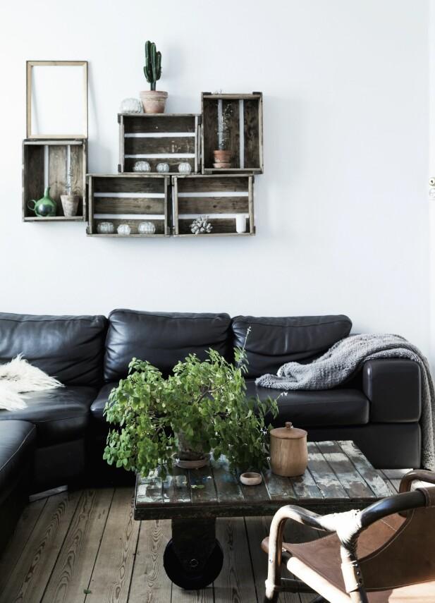 Huset kan ifølge Carina beskrives med ordene sjel, hygge og varme. Sjel på grunn av husets alder og innredning. Hygge fordi det er flotte elementer og proporsjoner i huset. Mens varmen ses i de materialene huset er bygget av. FOTO: Tia Borgsmidt