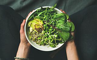 Er erstatningsproduktene for kjøtt sunnere?