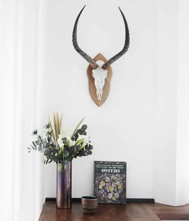 Geviret er en gave og passer perfekt inn som dekor på den hvite veggen! FOTO: Trine Bukh