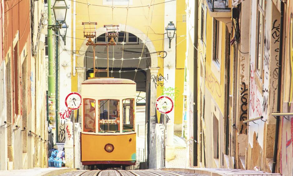 LISBOA: Noe av det beste med Lisboas trikker er at det er så billig å kjøre med dem. Et dagskort koster en femtilapp. FOTO: NTB Scanpix/ Privat