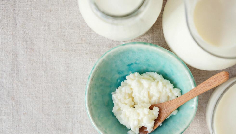 KEFIRKORN: Kefirkorn er en litt kornete masse som brukes som starter når du brygger den tykke melkedrikken. FOTO: NTB Scanpix