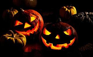 Familien Einarsen har brukt over 10 000 kroner på å pynte huset til Halloween