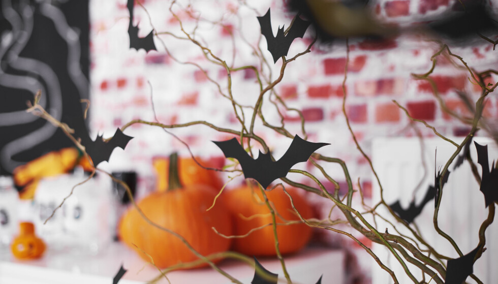 PYNT TIL HALLOWEEN: Det er ikke bare barna som kan ha det moro på Halloween. Inviter til selskap og dekorer med gresskar, blader og lys! FOTO: NTB Scanpix
