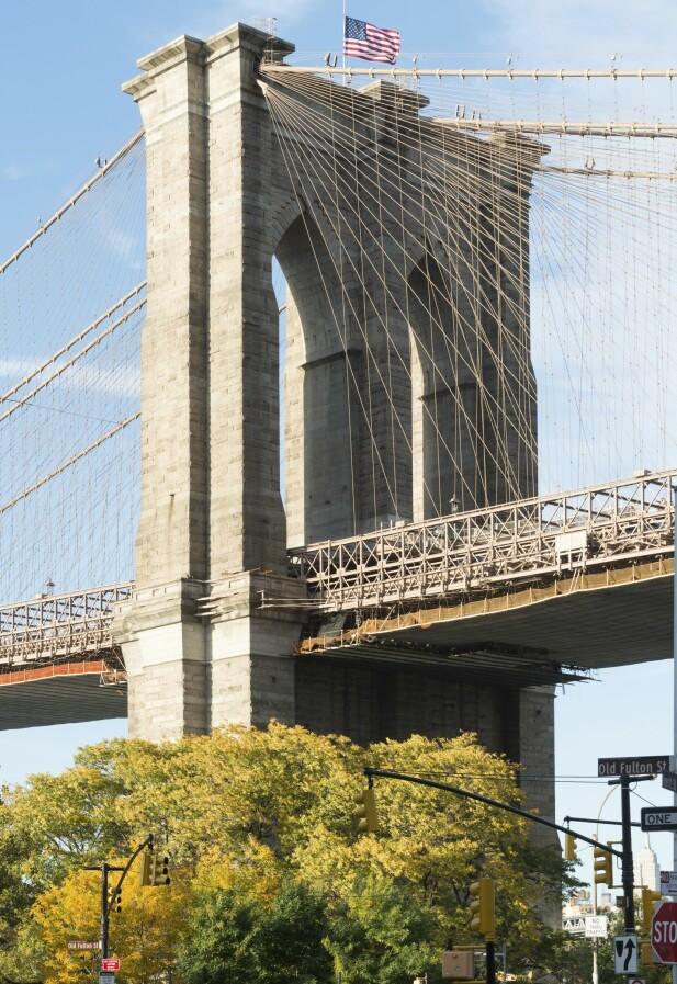 7 gode grunner til å besøke Brooklyn