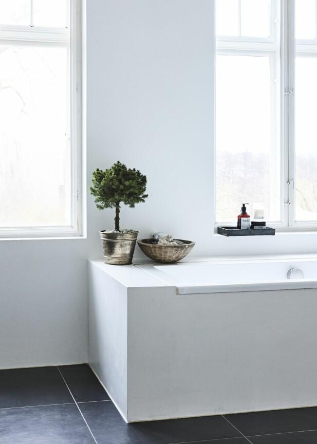 Også på badekarkanten er det blitt plass til et aldri så lite tre. FOTO: Mette Wotkjær