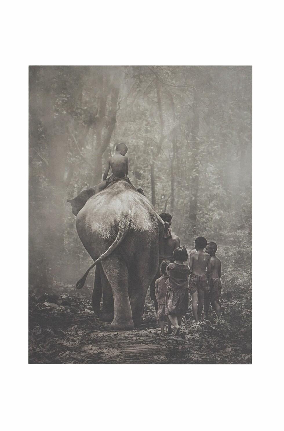 Poster (kr130, Ellos Home).
