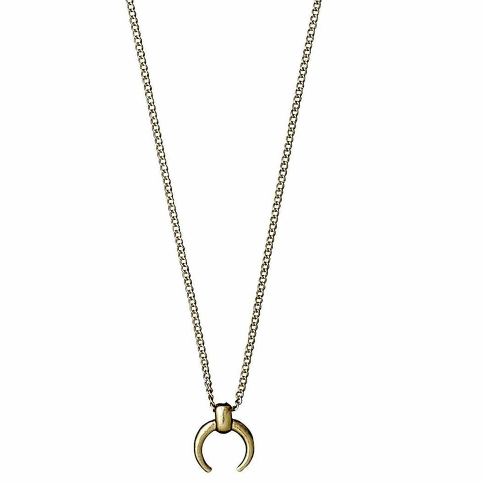 Halssmykket (kr250, Pilgrim).
