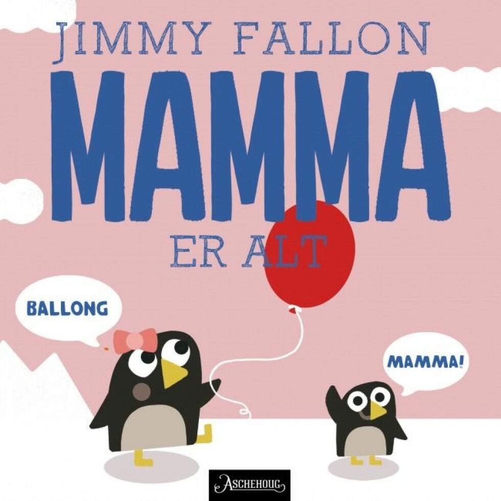 Bok av Jimmy Fallon |149,-| https://www.aschehoug.no/nettbutikk/alt-er-mamma-aco.html