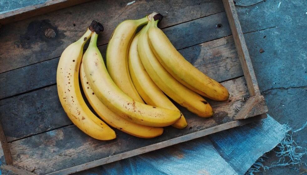 <strong>SKAL IKKE I KJØLESKAP:</strong> Bananer liker seg best i 12 grader. FOTO: Shutterstock