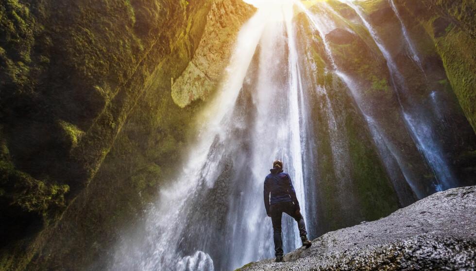 REYKJAVIK: Island er perfekt for opplevelsesferie, og i hovedstaden kan du også finne Europas beste pølsekiosk. Foto: Shutterstock
