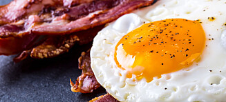 Forskere undersøkte menn: Fant ingen negative effekter av mye fett i kostholdet