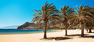 8 gode grunner til å dra til Tenerife