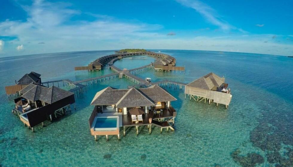 Vinneren får bo på Lily Beach Resort, et av Maldivenes aller flotteste hoteller (foto: Lily Beach)