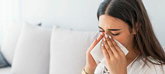 Blir du alltid forkjølet på senvinteren? Det kan være pollenallergi
