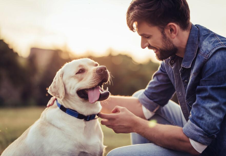 BAKTERIER i SKJEGG: Samtlige av mennenes skjegg som nylig ble testet hadde mer bakterier i seg enn hunden hadde i pelsen. FOTO: NTB Scanpix