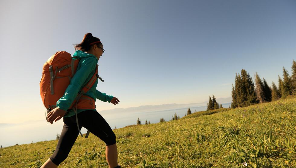 <strong>LEGG BORT MOBILEN:</strong> Gåturer i naturen kan redusere stress, men kun dersom du er bevisst og til stede. FOTO: NTB Scanpix