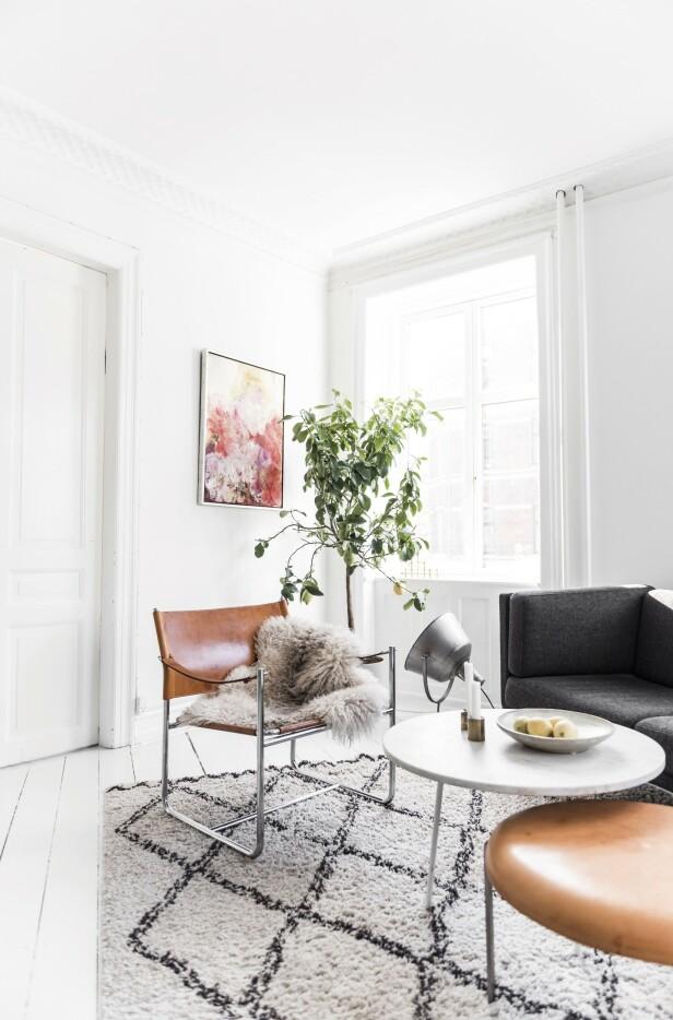 Maleriet på veggen er malt av Tildes mor. Den høyt elskede skinnstolen signert Karin Mobring ble kjøpt brukt for seks år siden. Foto: Benjamin Lee Rønning Lassen