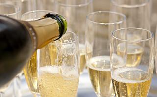 Hva er egentlig forskjellen på Champagne, Crèmant, Cava og Prosecco?