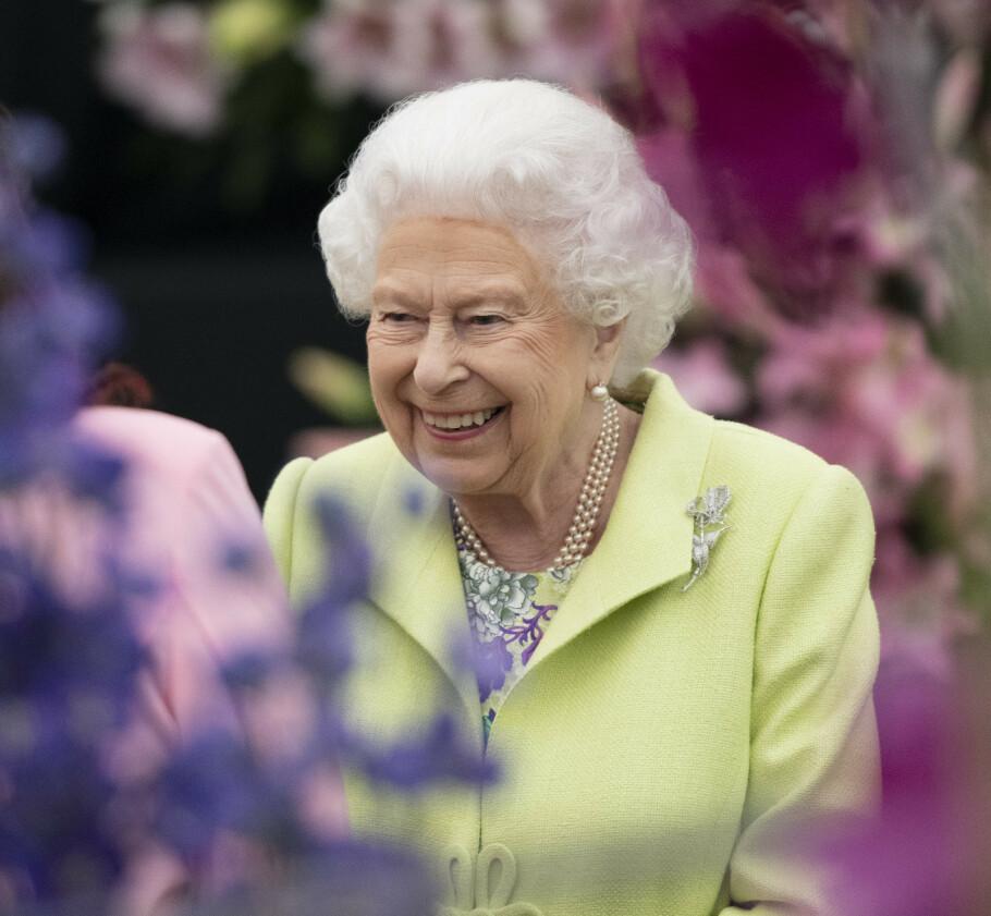 SØKER ANSATT: Dronning Elizabeth trenger noen som er god på sosiale medier. Er det deg? Foto: Scanpix
