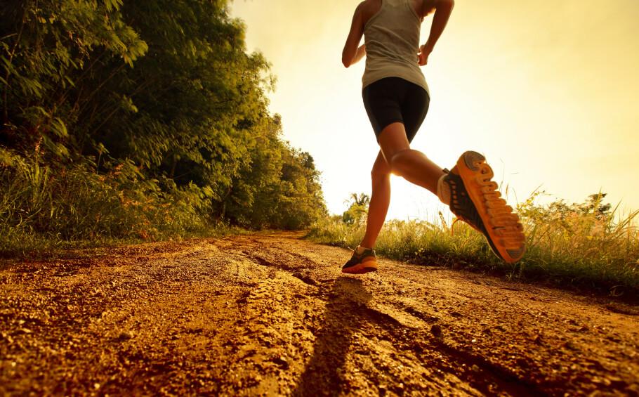 LØPESKADE: Å løpe mye på hardt underlag er en av risikofaktorene for å få plantar facitt, skogsveier er derfor å foretrekke. FOTO: Scanpix