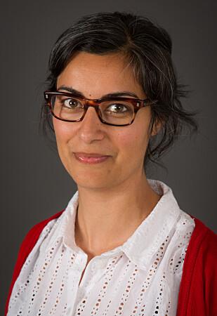 FORSKER PÅ NETTHAT: Marjan Nadim er sosiolog og forsker ved Institutt for samfunnsforskning. FOTO: Institutt for samfunnsforskning