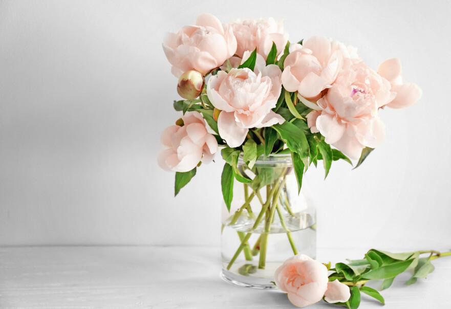 KALDT ELLER LUNKENT VANN: Blomsterbuketten kan leve i en uke hvis du følger noen enkle tips. FOTO: NTB Scanpix