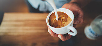 Hvor lang tid tar det før kaffekoppen virker?