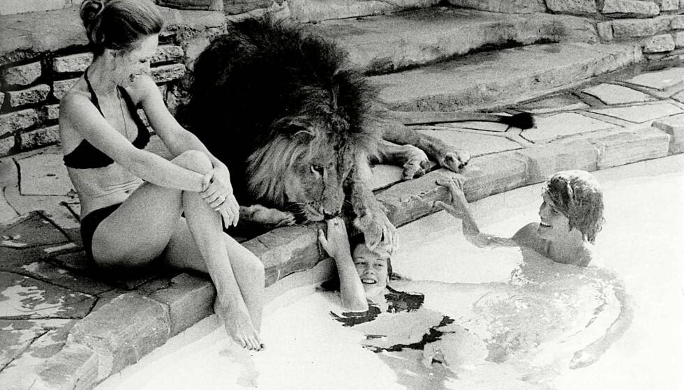<strong>EN HELT VANLIG DAG:</strong> Melanie Griffith får en vennskapelig labb på hodet av løven Neil. Mamma Tippi slapper av på bassengkanten i huset deres i California FOTO: NTBScanpix