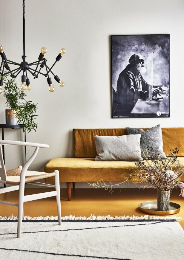 Divanen er fra loppemarkedet. Fløyelsstoff får du kjøpt i stoffbutikker. Y-stolen er fra Carl Hansen & Søn. Lampen er fra Madam Stoltz. Avlangt putetrekk og kvadratisk putetrekk er begge fra Sofakompagniet. Teppet er fra Bloomingville og plakaten fra Albers Interiør & Design. Veggen er malt i fargen Space og gulvet i fargen Oker fra Jotun. Foto: Martin Panduro