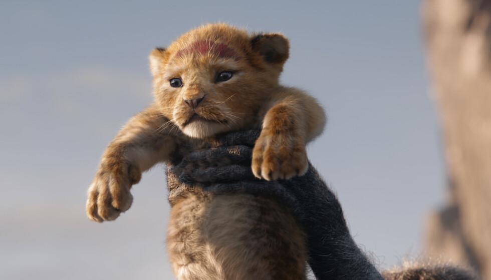 SIMBA: Vi gleder oss til å se den nye versjonen av «Løvenes konge», som har norgespremiere 17. juli 2019. Det er Espen Grjotheim som har den norske stemmen til hovedrollen Simba. FOTO: Disney Enterprises