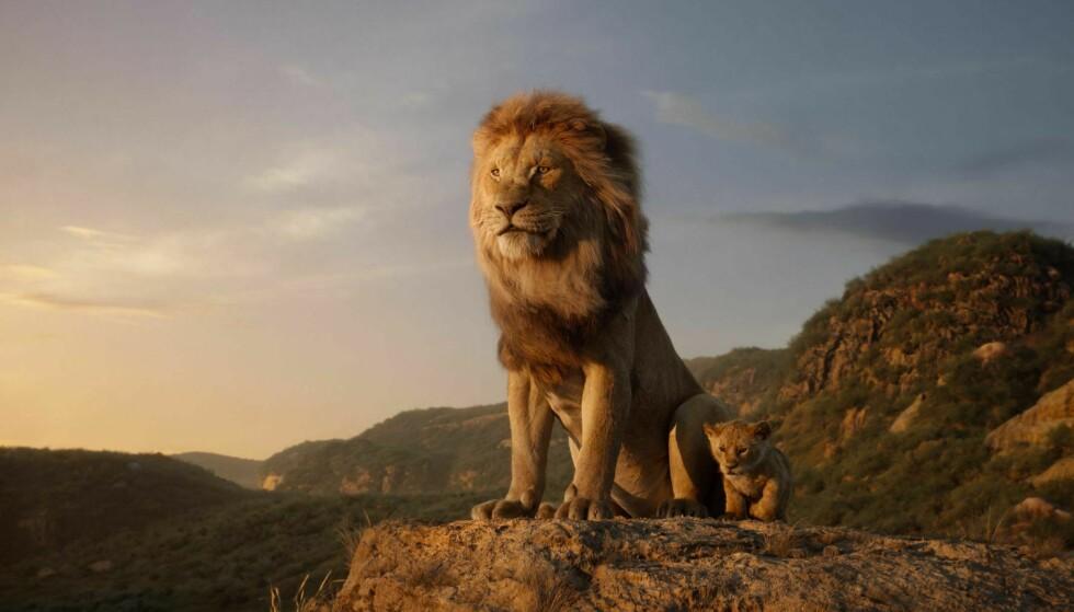 - EN DAG SKAL ALT DETTE BLI DITT: I «Løvenes Konge» må lille Simba ta over kongerollen etter sin far Mufasa, som blir drept av sin bror Scar - som selv vil overta tronen. FOTO: NTB Scanpix