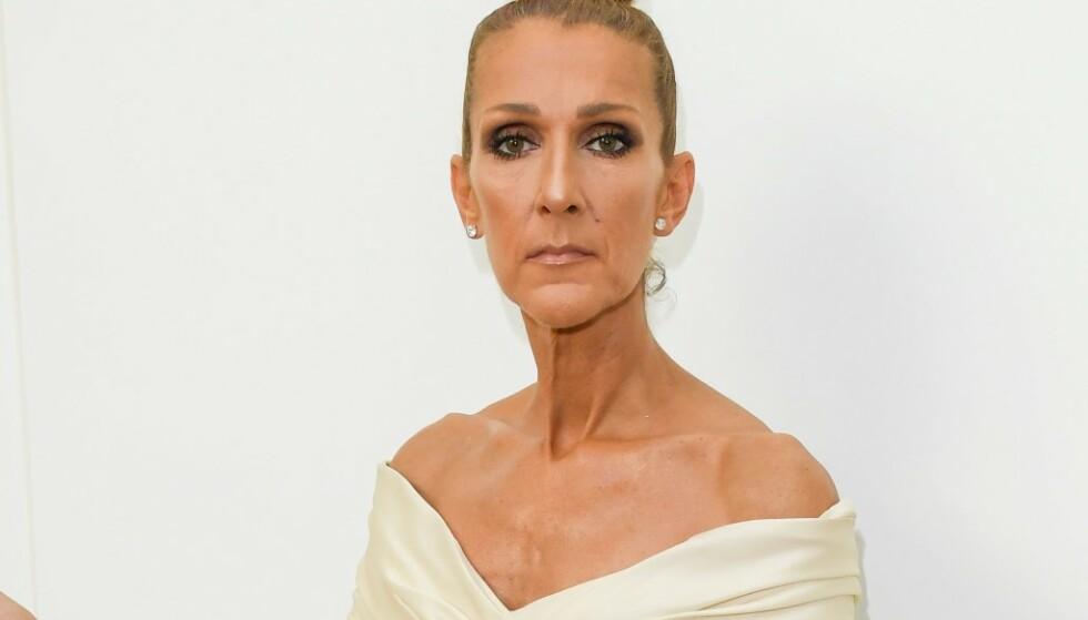 Celine Dion eier 10 000 par sko