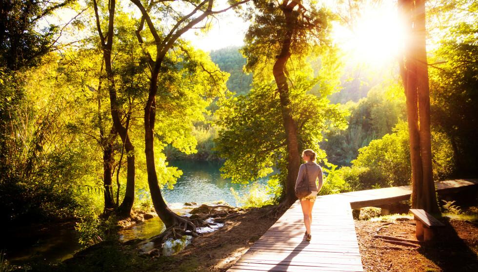 BRA FOR HELSA: For mange er det ikke noe mål å løpe maraton, men å gå en tur i nydelig natur er bra for kropp og sjel. FOTO: Scanpix